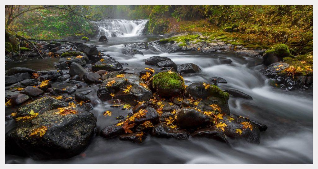 Sweet Creek - Item No. LS06 - $214