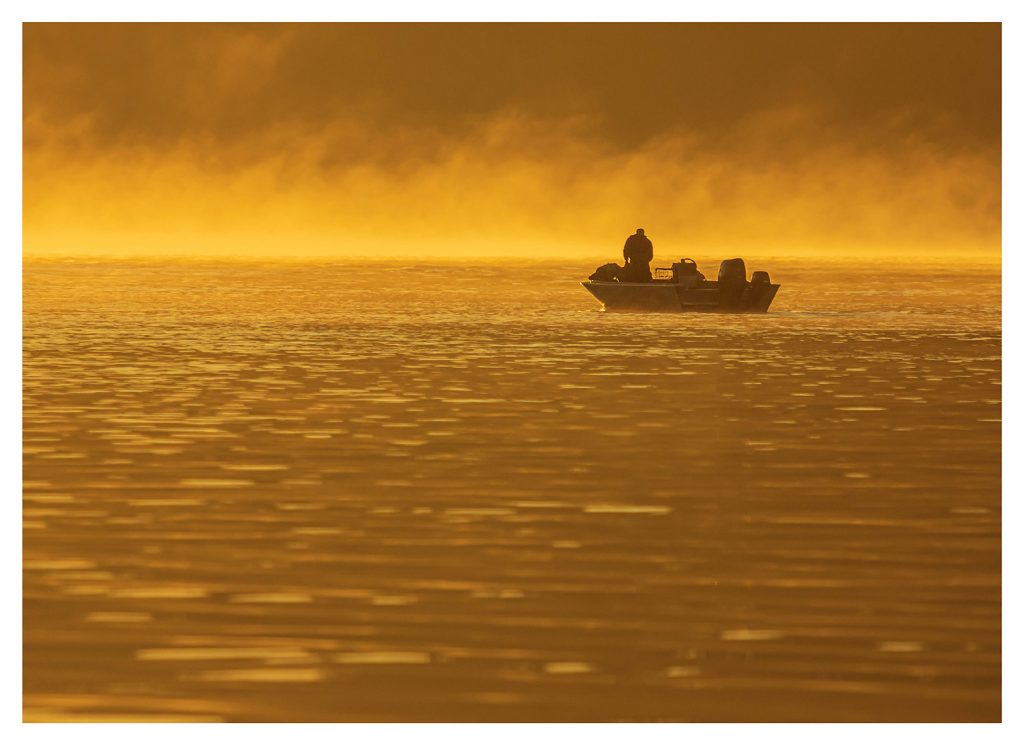 Golden Morning - Item No. LS20 - $218