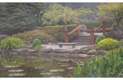 Zen Garden - Item No. LS24 - $237