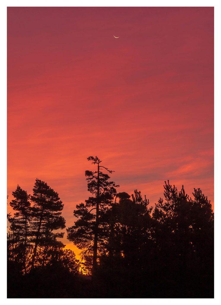 Crescent Moon Sunrise - Item No. LS43 - $237